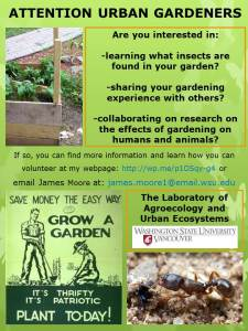 Urban Gardener Research Recruitment Poster