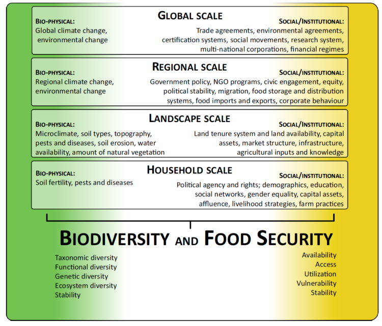 food-security-biodiv-framework