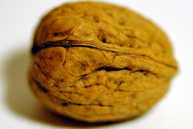 walnut-315549_640